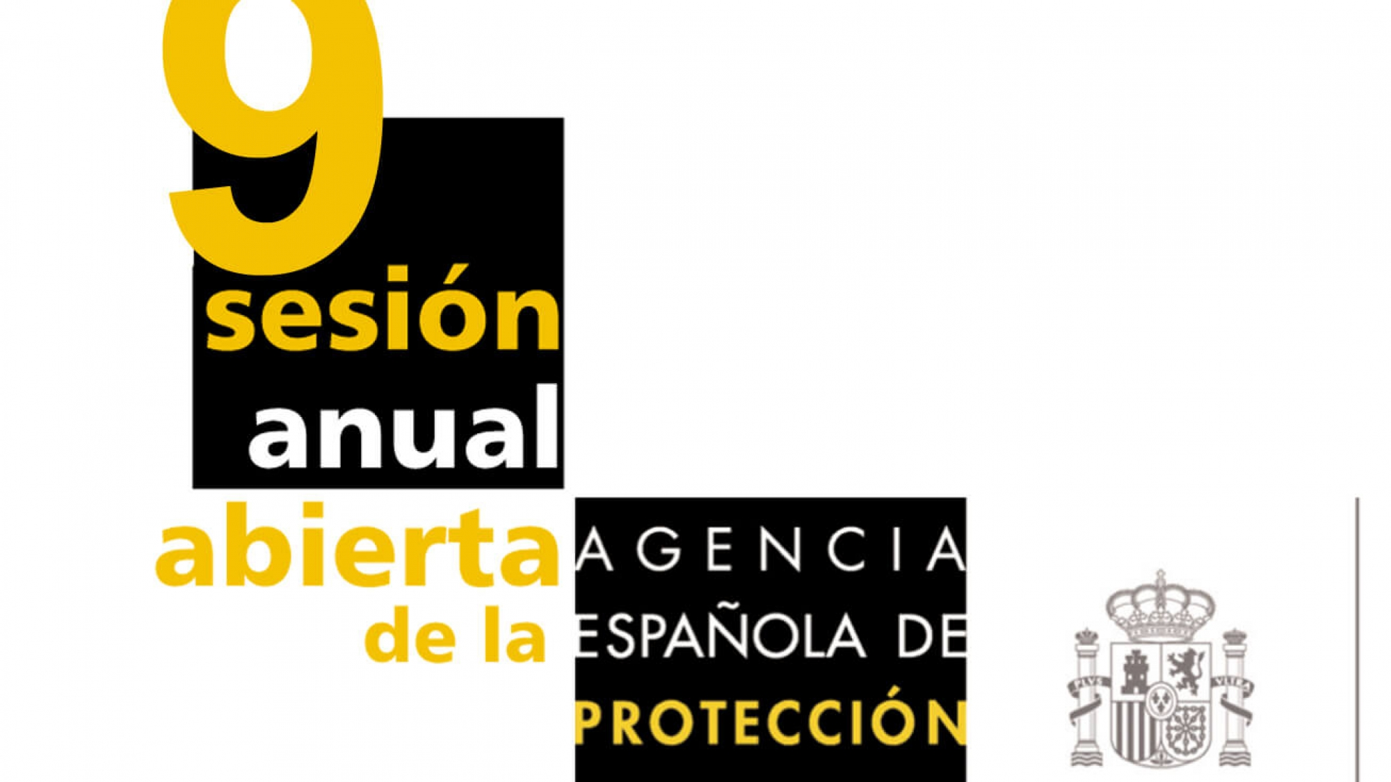 9-sesion-anual-aepd